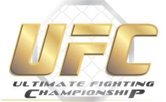 ufc logo UFC 73 Predictions