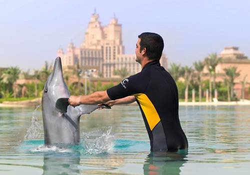 31 Wanna Visit Atlantis?