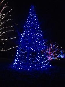 DSC000691 225x300 Longwood Gardens: Christmas Lights Display