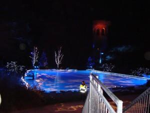 DSC000881 300x225 Longwood Gardens: Christmas Lights Display