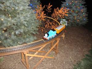 DSC001072 300x225 Longwood Gardens: Christmas Lights Display