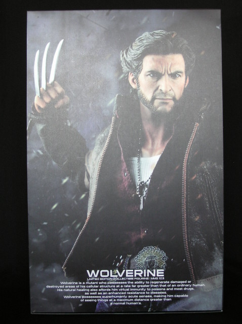 P1010002 Action Figure Review: Hot Toys Wolverine