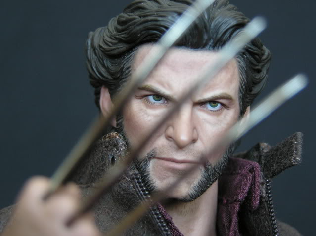 P1010007 Action Figure Review: Hot Toys Wolverine