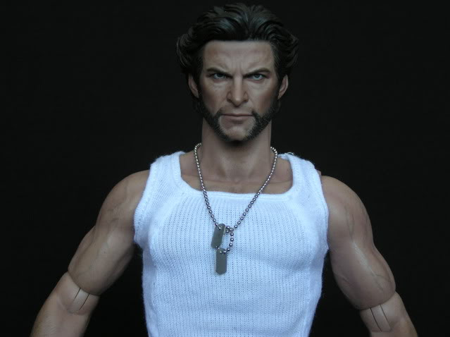 P1010010 Action Figure Review: Hot Toys Wolverine