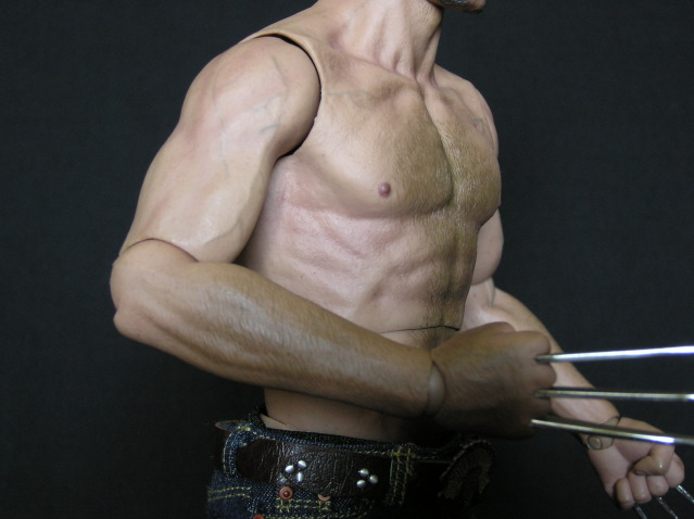 P1010015 Action Figure Review: Hot Toys Wolverine