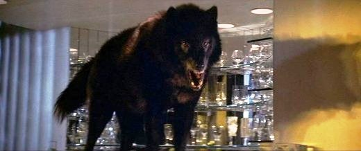 wolfen main2 Bleeding Heart Horror:  A look at the socially conscious side of scary movies