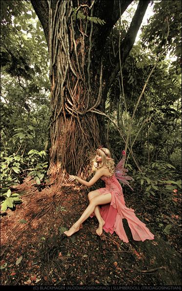 fairy Sexy Baroness Cosplayer: Alodia Gosiengfiao
