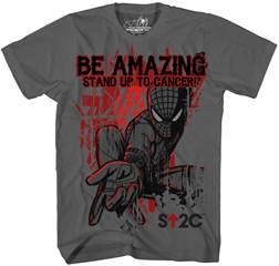 image002 Amazing Spider Man Festivities