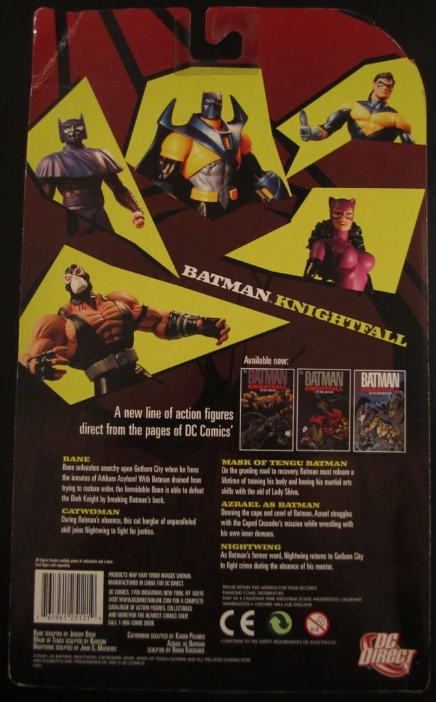 0022 637x1024 Girls Who Rule! Knightfall Catwoman