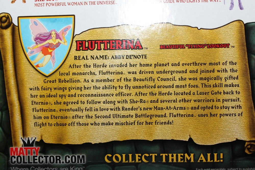 017 Masters of the Universe Classics: August  NA Skeletor & Flutterina