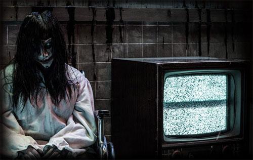 tv Haunting Experience At Knotts Scary Farm 2014