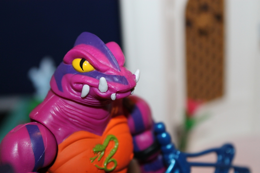 040 Masters of the Universe Club Etheria: December  Spinnerella!